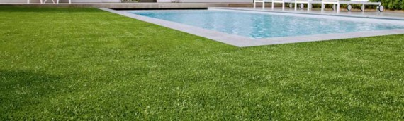 Improving your garden space