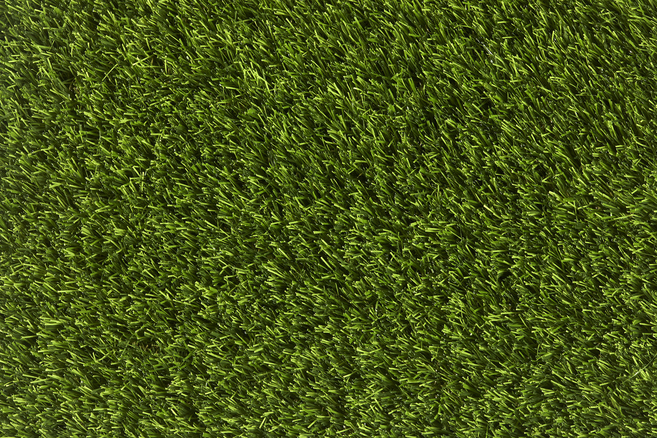 carpet-fit-wales-south-valleys-aberdare-aberaman-quality-flooring-great-customer-service-artificial-grass-carpet-fit-wales-south-valleys-aberdare-aberaman-quality-flooring-great-customer-service-artificial-grass-competiticarpet-fit-wales-south-valleys-aberdare-aberaman-quality-flooring-great-customer-service-artificial-grass-competition-50mm-pile